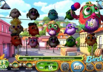 Slot Birds!
